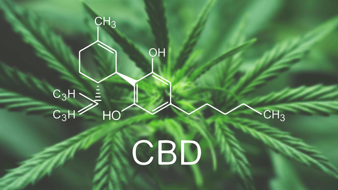 W jaki sposób olejek CBD wpływa na Twój organizm?